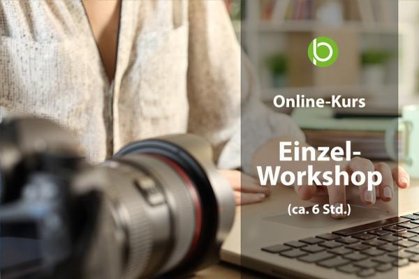 Workshop - Einzelunterricht (6Std.)